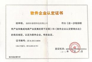 Software Enterprise Identification Certificate